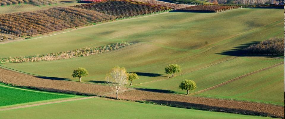 http://www.verdunopelaverga.it/wp-content/themes/paradise/timthumb.php?src=http://www.verdunopelaverga.it/wp-content/uploads/2011/04/slide2-960x400.jpg&w=80&h=50&zc=1